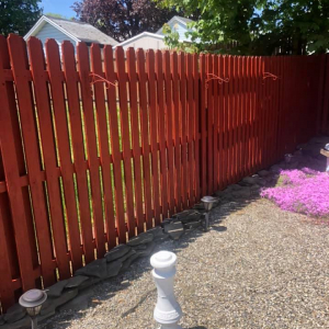 Fence After-2
