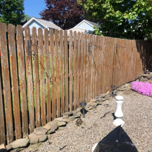 Fence Before-2